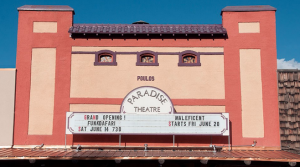 A donor-advised grant to the Friends of the Paradise Theater building fund helped to preserve and renovate this Historic Landmark in Paonia.
