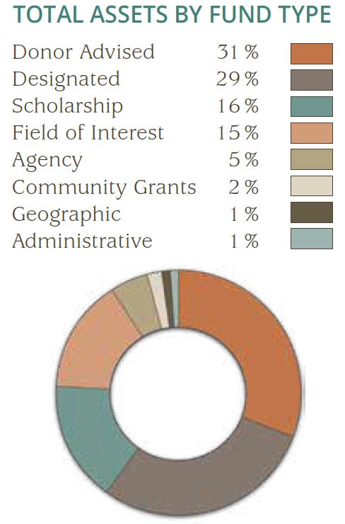 Pie Chart of Assets by Fund Type 2020